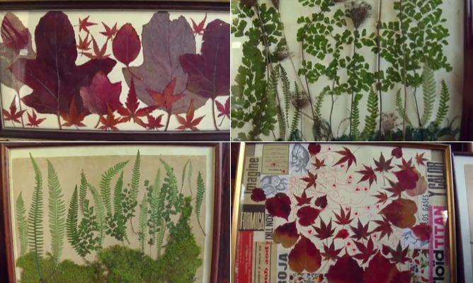 Collage vegetal con hojas secas  Bricomana