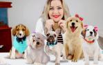 Fazer Laços para Pet pode ser uma renda