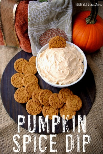Who doesn't love pumpkin spice when the fall season hits? With this easy pumpkin spice dip, you'll have yet another way to enjoy this amazing autumn favorite right from the comfort of your own home! Plus it's quick and easy to whip together! What are you waiting for? Click through now!