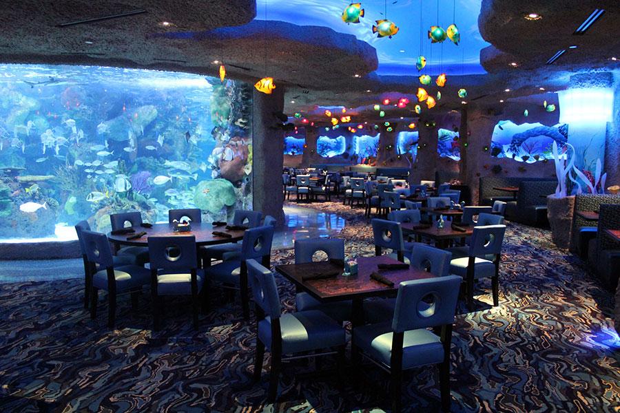 Seis restaurantes donde comer bajo el agua  Foto 3