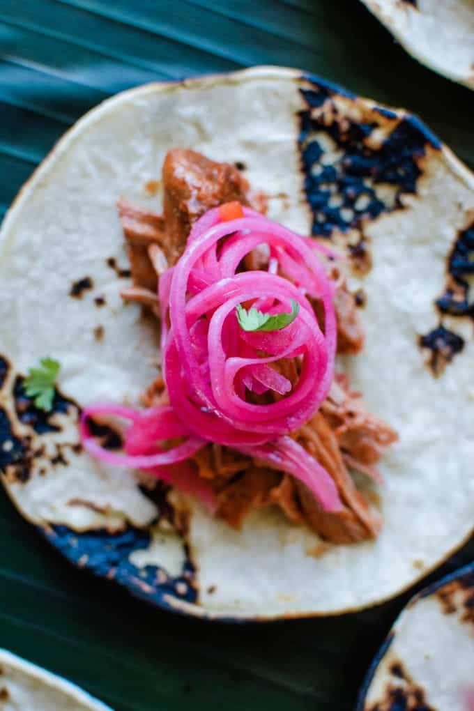 Cochinita Pibil pork tacos with pickled red onions on top sitting on a green background.