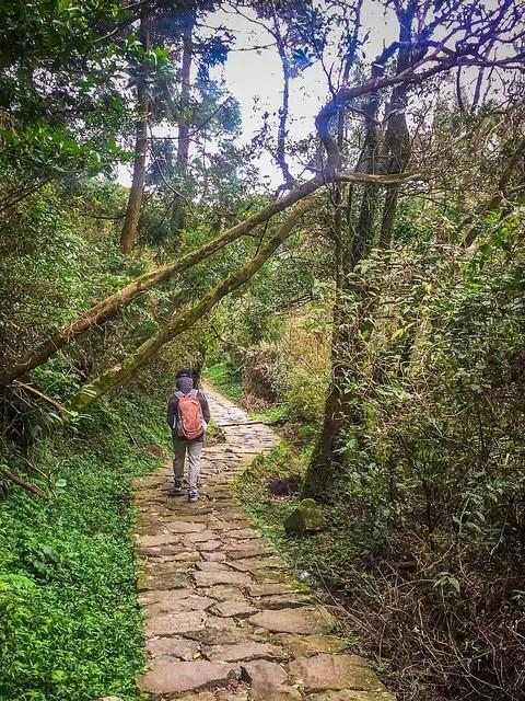 Un día caminando por Yangmingshan