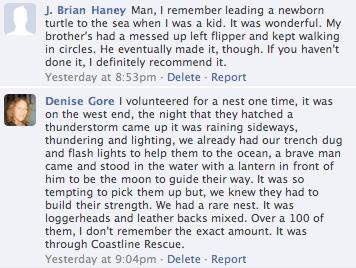 Facebook Turtle Talk Comments