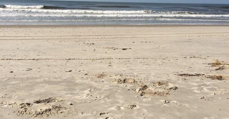 Beautiful Beach after Arthur