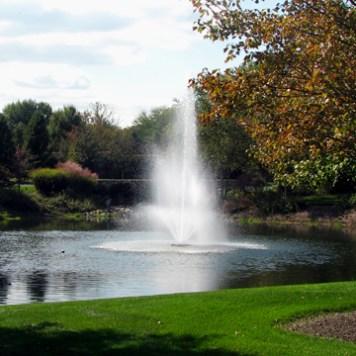Pond Spray
