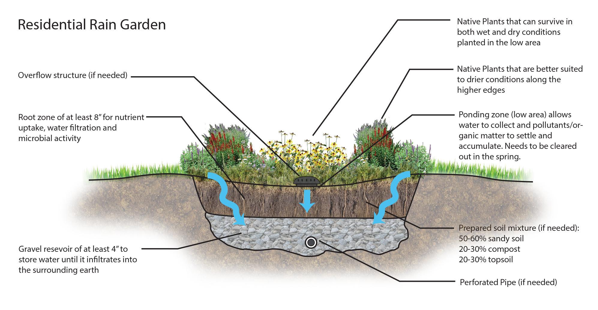 Rain Garden Drain Pipe