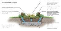 Rain Garden Drain Pipe - Garden Designs