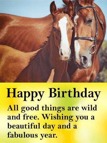Beautiful Horses Happy Birthday Card Birthday & Greeting