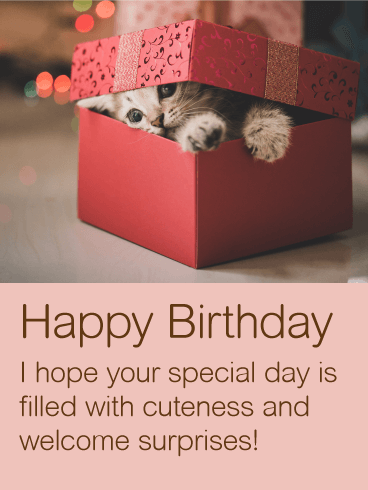 Cute Kitten Happy Birthday Wishes Card Birthday