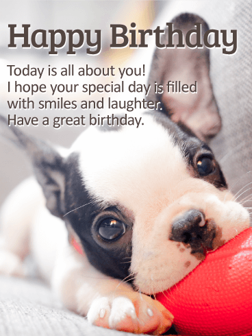 Playing Puppy Happy Birthday Card Birthday & Greeting