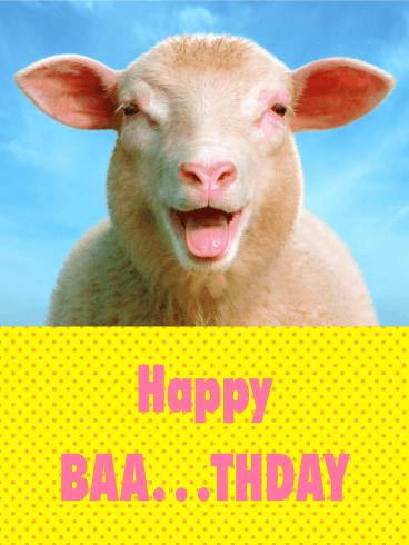 Cute Sheep Funny Birthday Card Birthday & Greeting Cards
