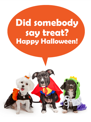 Somebody Say Treat Funny Halloween Card Birthday