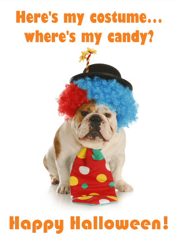 Wheres My Candy Funny Halloween Card Birthday