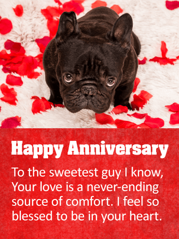 To The Sweetest Guy Happy Anniversary Card Birthday Amp Greeting Cards By Davia