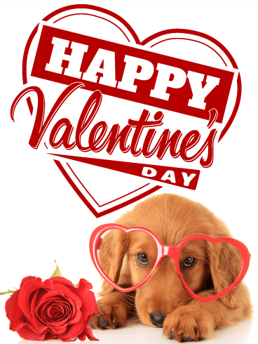 Cute Dachshund Happy Valentine's Day Birthday & Greeting