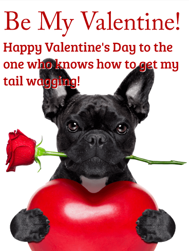 Make My Tail Get Wagging Happy Valentine's Day Card