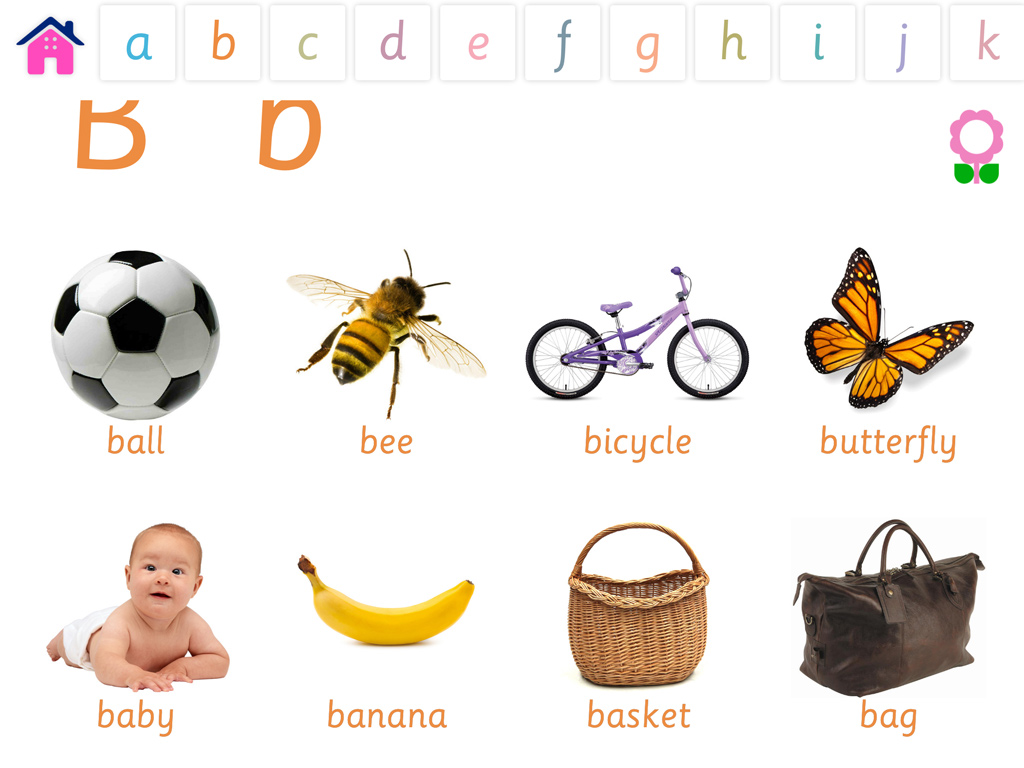 Alphabets Vocabulary Book