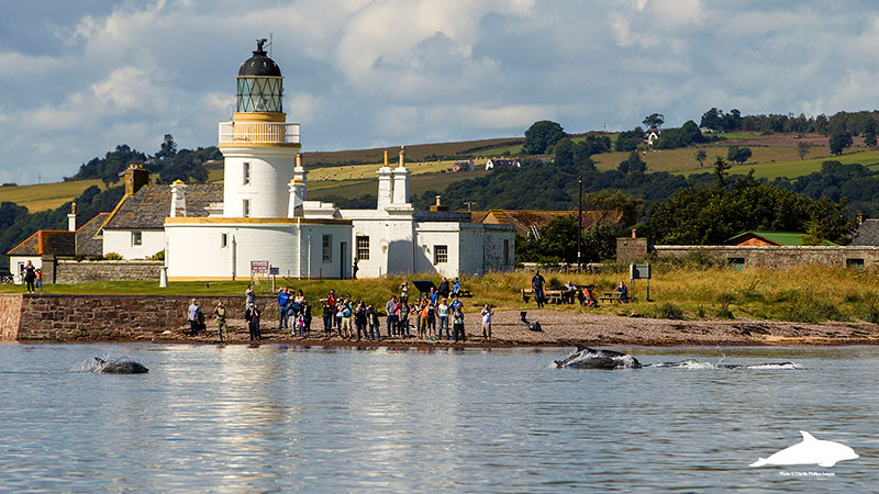 Chanonry Point from the sea