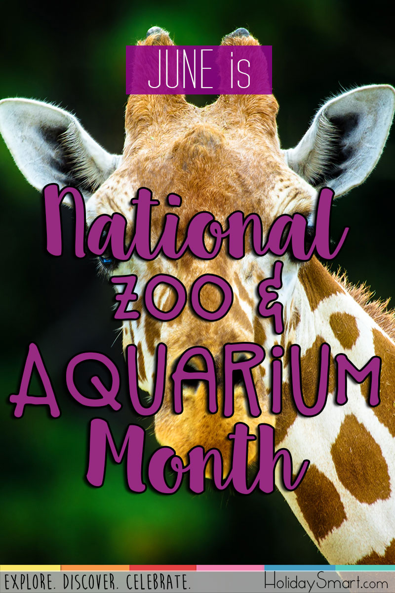 National Zoo  Aquarium Month  HolidaySmart