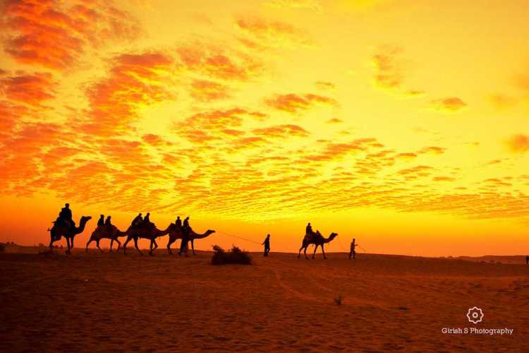 Jaisalmer, places to visit in india in november
