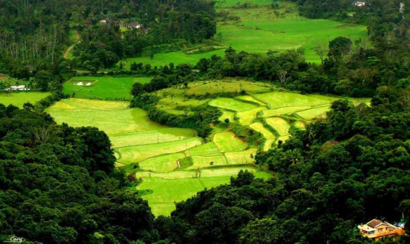 Coorg Travel Packages   Yoktravels com