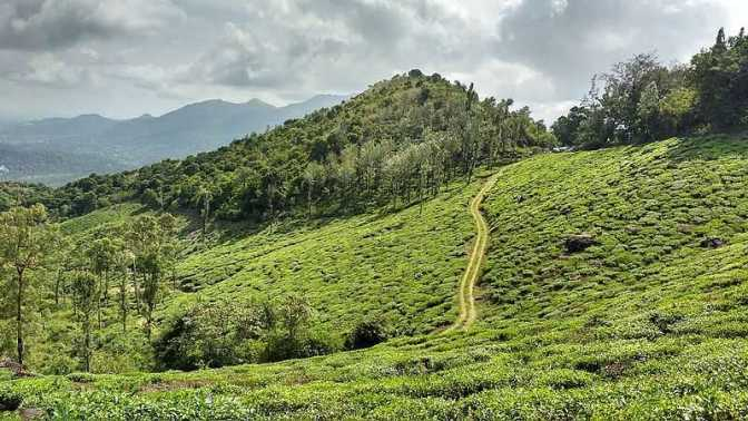 wayanad, top places to visit in south india
