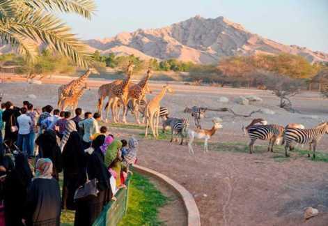 Al Ain Zoo, Al Ain, UAE - Timings, Entry Fee - Holidify