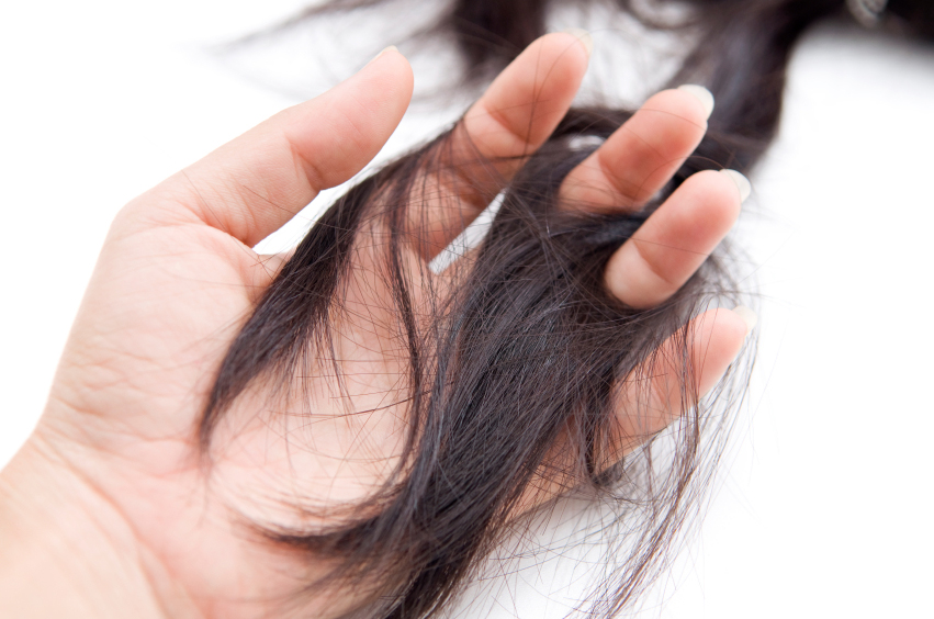 How Zinc Can Reverse And Prevent Hair Loss Holistic Health Living