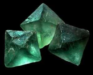 minerals of life
