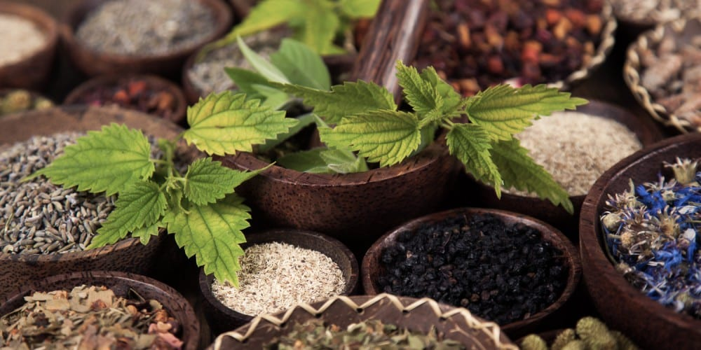 Good and bad news in the war on compounded natural medicine