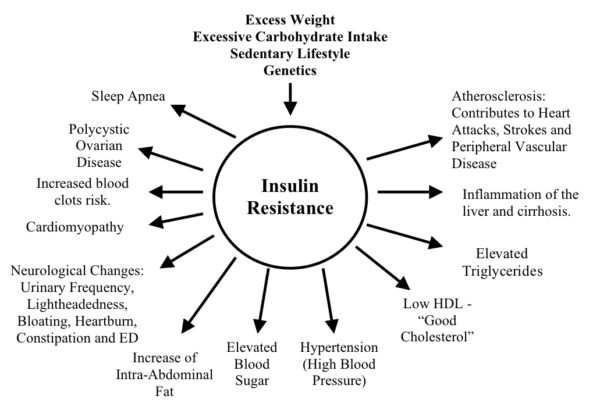 The insulin resistance diet protocol