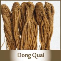 Dong-Quai