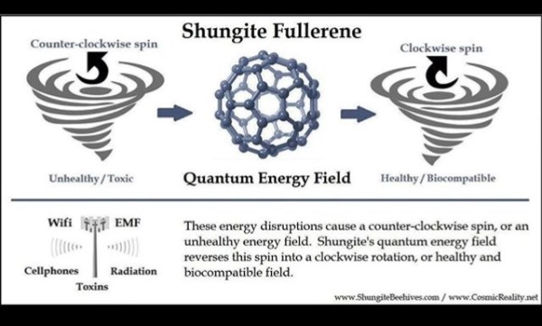 Shungite Fullerene 1 Orgonite Total Family Defense System