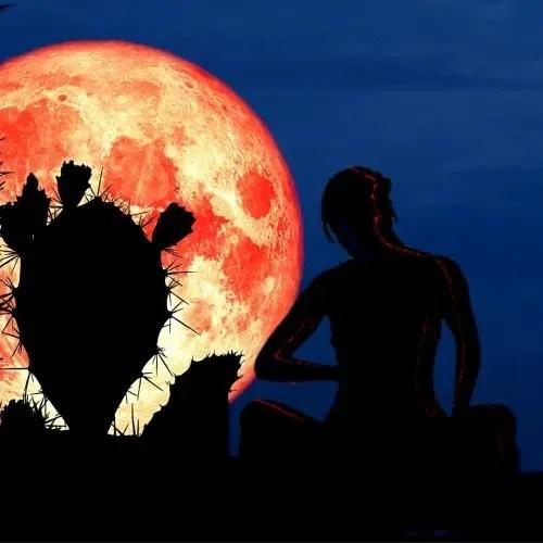 Strawberry Moon Online Spiritual Event 5 June 2020 Sagittarius Full Moon Rituals and Collective Dream Healing | Conscious Evolution