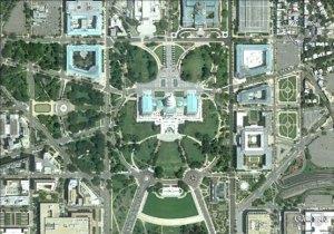 Owl-Capitol-Building