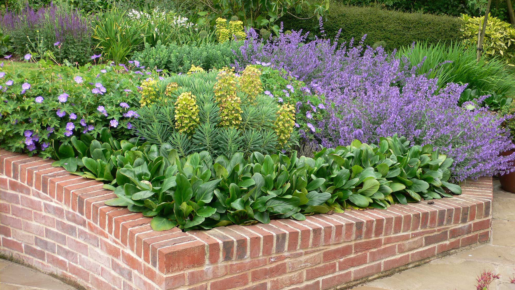 Designing And Building Low Maintenance Planting Schemes