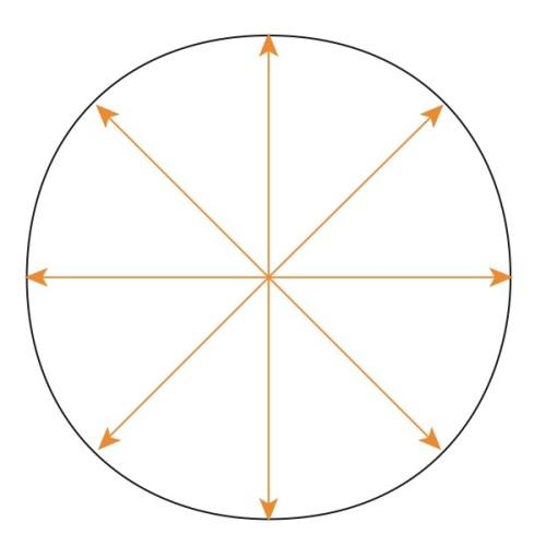 Circle Concentric