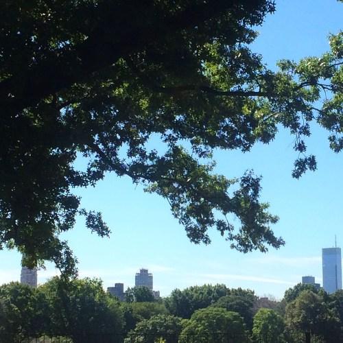 blue NYC sky