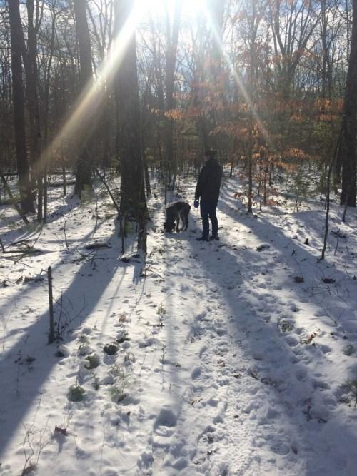 snowy-New-England