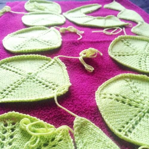 shawl geometry swatches