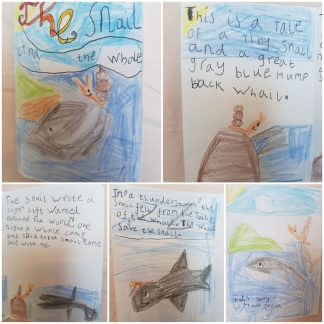 Home learning (11)