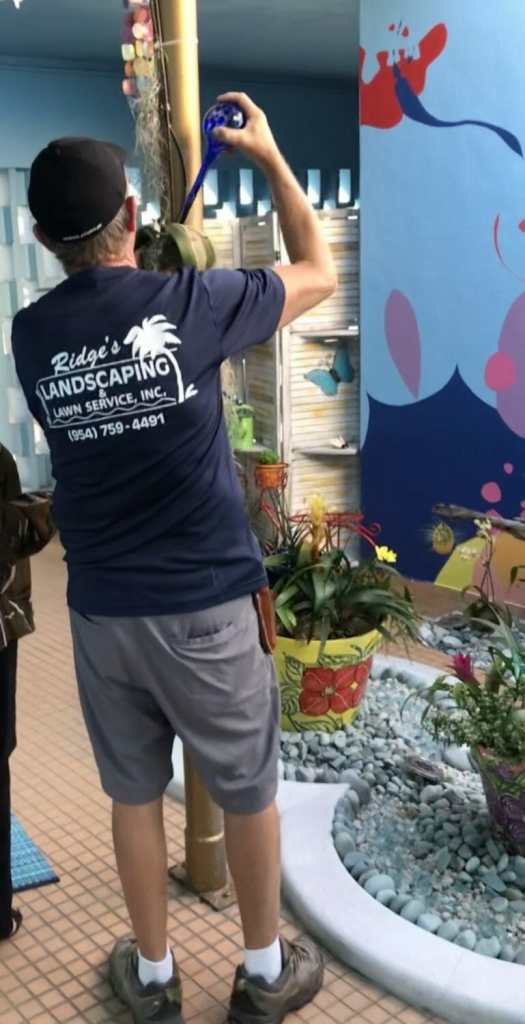 Local couple donate new garden space to art & culture center/hollywood