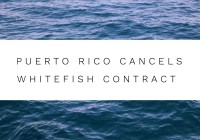 Puerto Rico Cancels Whitefish Contract