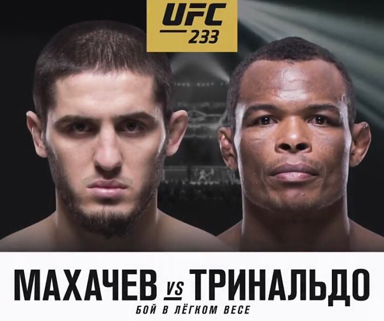UFC 233 poster Russian
