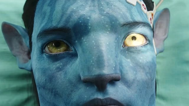 Avatar 2009 Dual Audio 300mb 480p Hindi BluRay mkv movie Download screenshot 3
