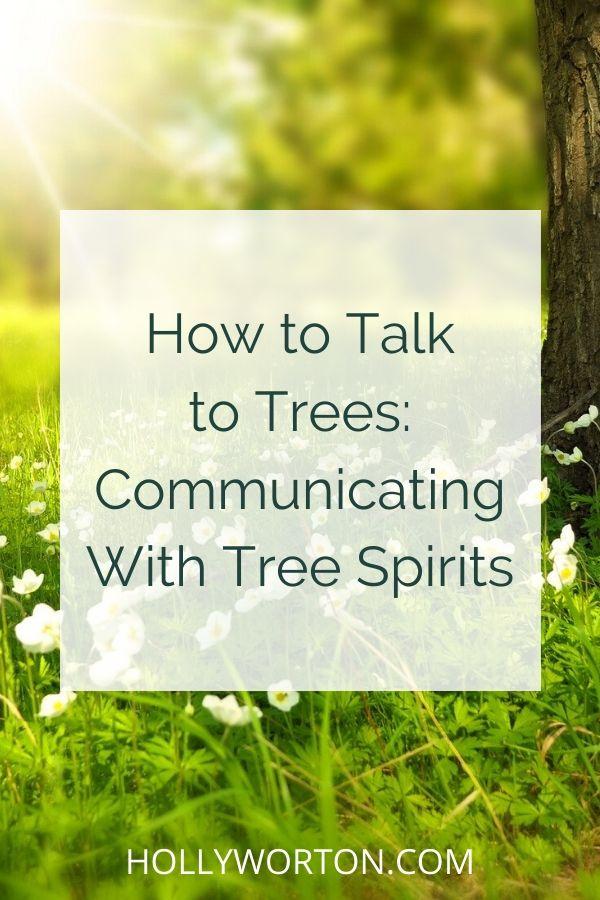 Talk to trees | talk to plants | plant spirit healing | plant spirits | tree spirits | talk to the trees | if trees could talk | animism