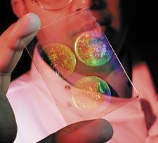 hologrammes biopsie