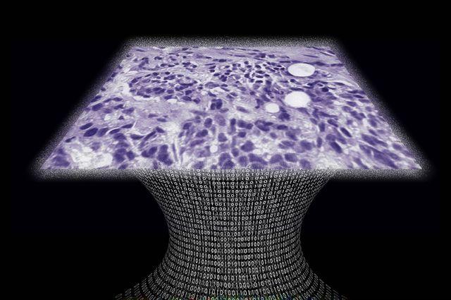 medecine hologrammes