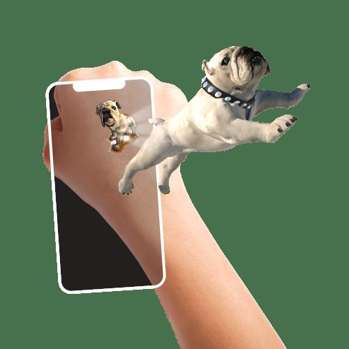holotoyz-temporary-tattoo-animes-chien-chat-lapin-poisson
