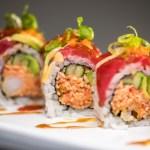 Sushi Holt Photographic